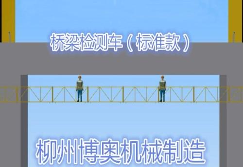 桥梁检测标准款_副本